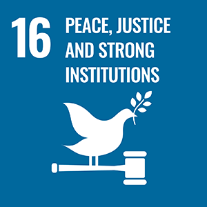 SDG 16. Peace, Justice and Strong Institutions