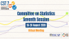 The seventh session of the Committee on Statistics