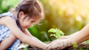 Photo of a little girl gardening